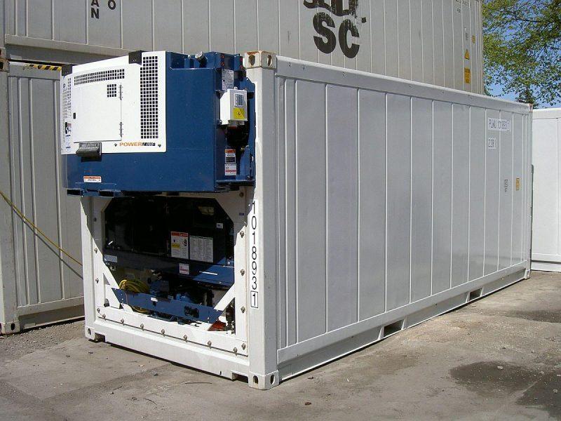 Frigo containers sales